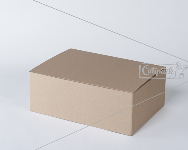 Pudelko z tektury - Catipack